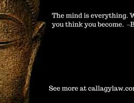 Buddha Callagy Law