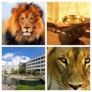 Callagy Law